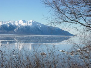 View of Turnagain Arm the week of the Iditarod