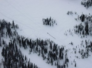 Iditarod musher races to Rainy Pass