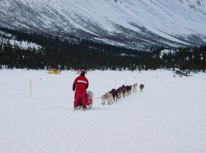 Iditarod musher leaves checkpoint