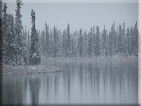 First snow of the year at Kashwitna Lake near Willow.